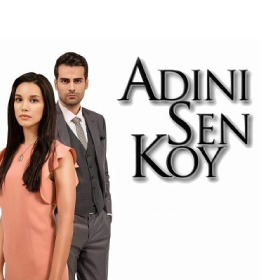 ADINI SEN KOY